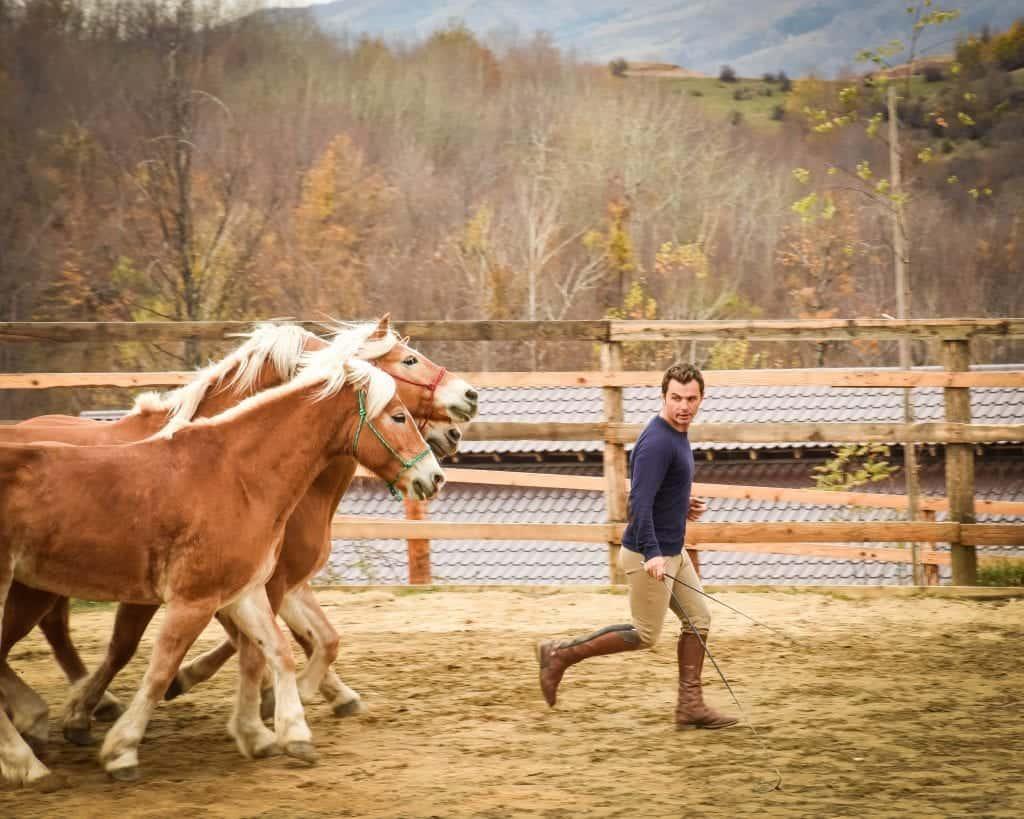 Romania - Potcoava -Horse Show
