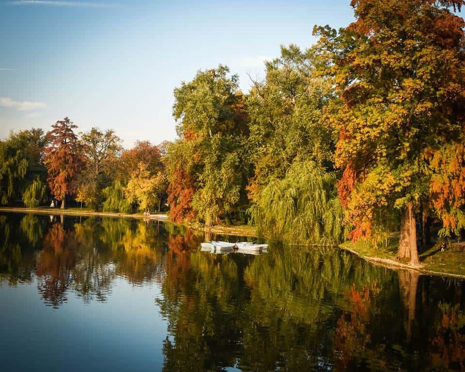 Romania - Bucharest - Fall in Park