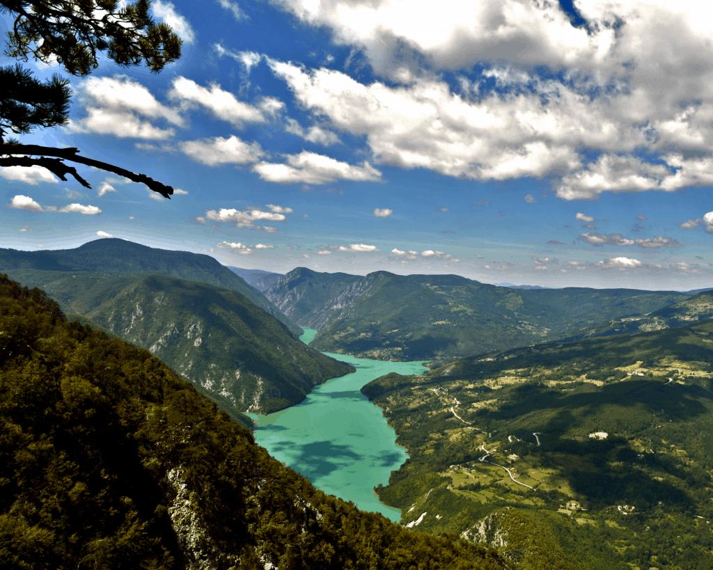 Serbia - Tara National Park - Canva