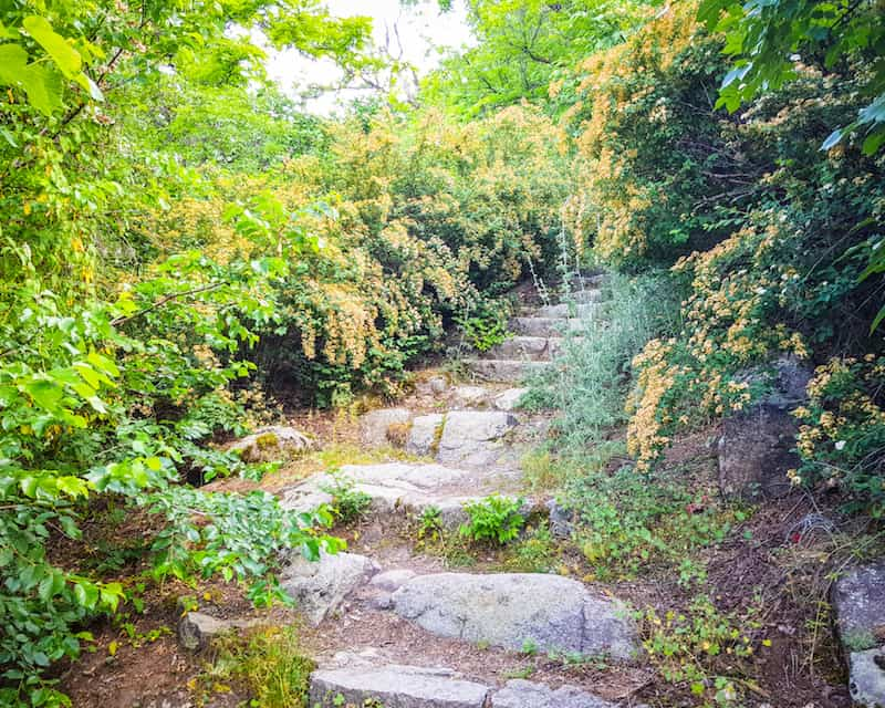 Bulgaria - Plovdiv - Alyosha Monument Stairs