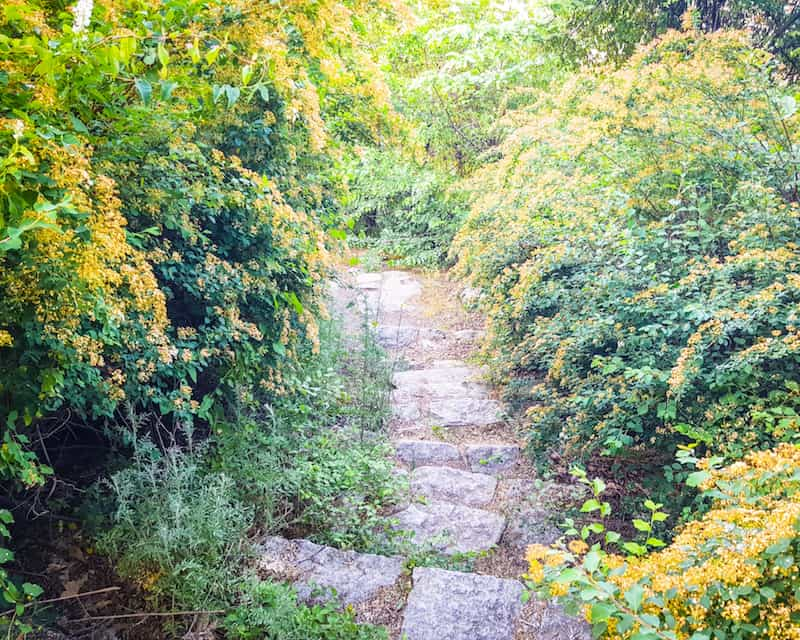 Bulgaria - Plovdiv - Stairs to Alyosha Monument