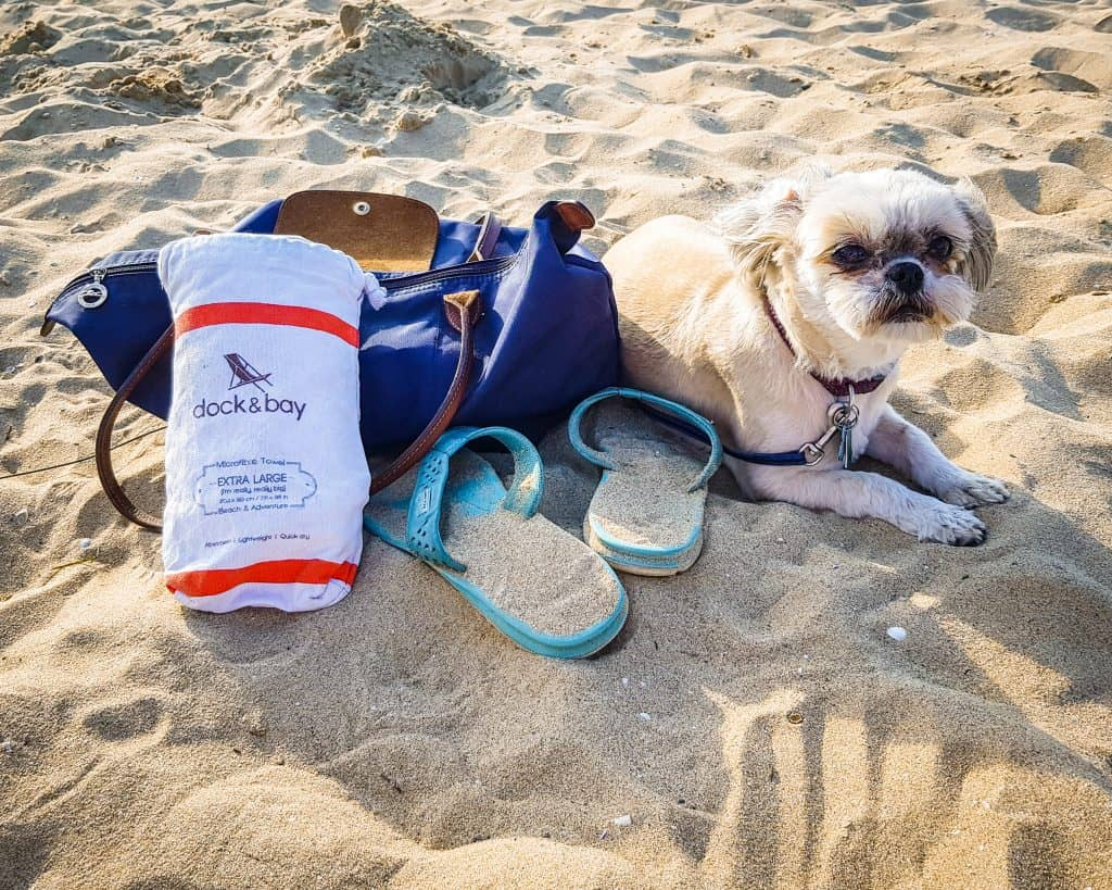 Bulgaria - Sunny Beach - Lucy on the beach with my Longchamp and travel towel and Ecco sandals