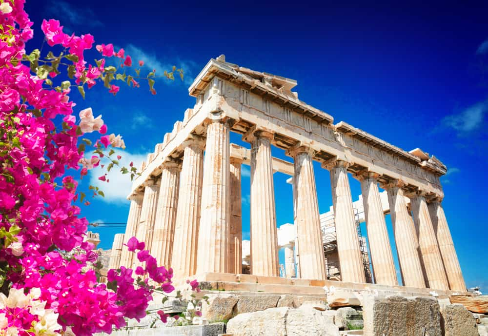 Greece - Athens - Parthenon temple over bright blue sky background, Acropolis hill, Athens Greecer with flowers