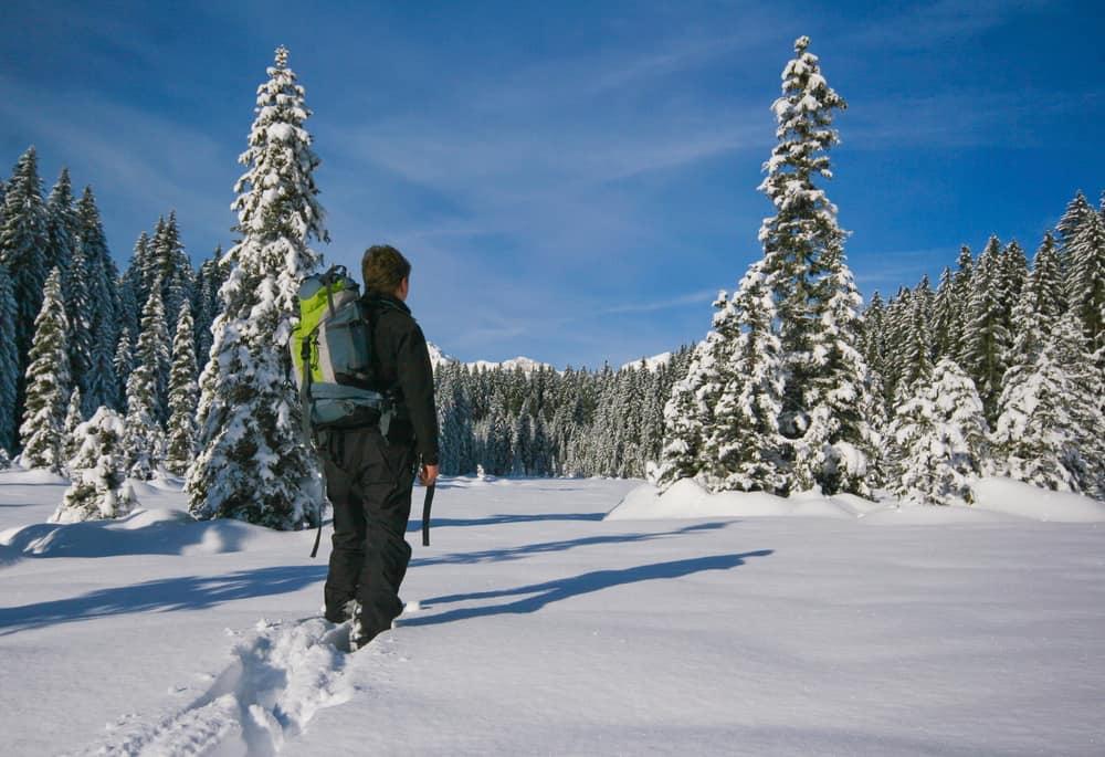 Slovenia - Pokljuka - Snowshoeing Man mountainering with snowshoes on fresh snow