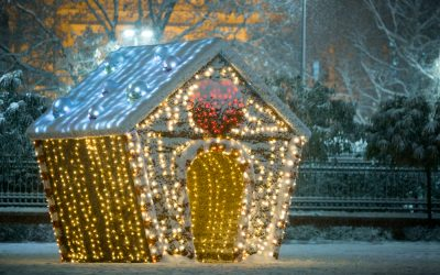 How to Visit the Novi Sad Christmas Market for an Enchanting Serbian Christmas