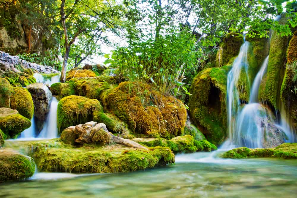 Long exposure shot of waterfalls and rocks and plants