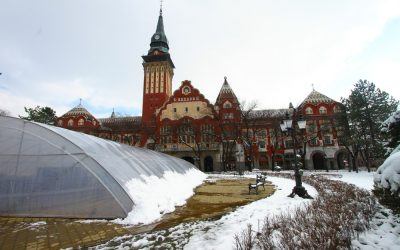 How to Visit the Subotica Christmas Market for an Art Nouveau Christmas