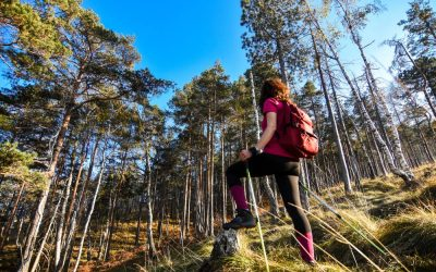 Great Hikes in Serbia That You Must Check Out!