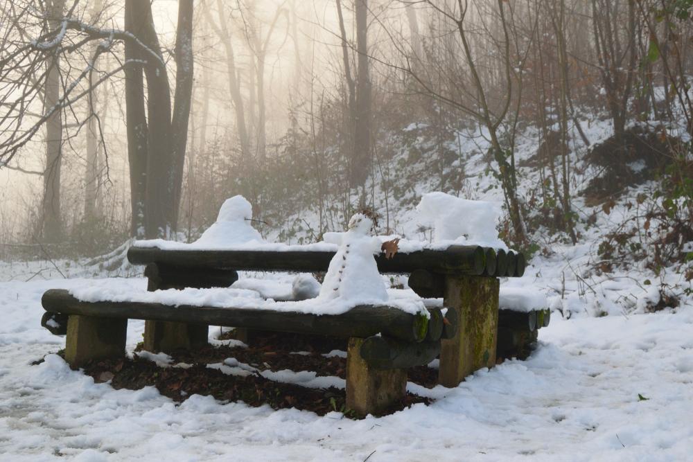 Slovenia - Snowy sculptures, Slovenia Ljubljana park Tivoli