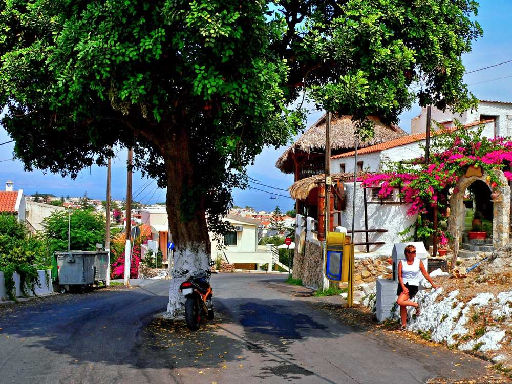 Greece - Crete - Greece,Crete-view of a tree in the middle of a road in Platanias