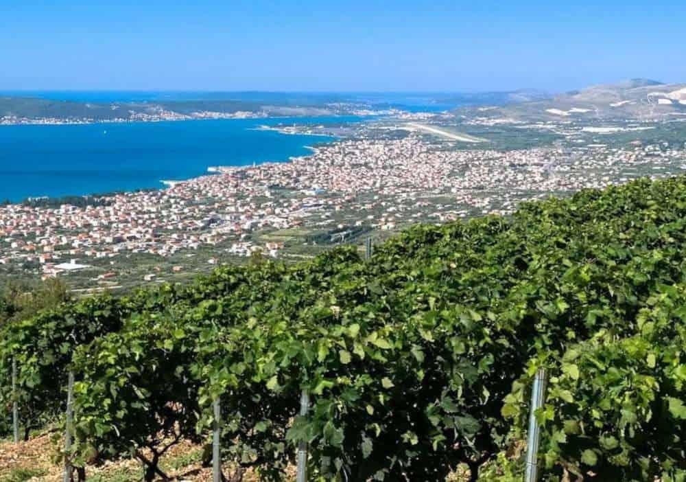 Croatia - Bedalov Winery