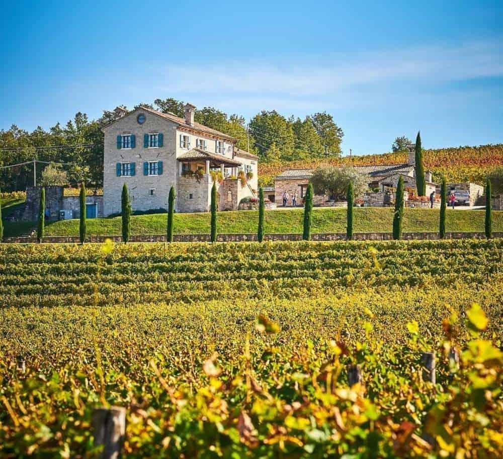 Croatia - Istria - Kabola Winery