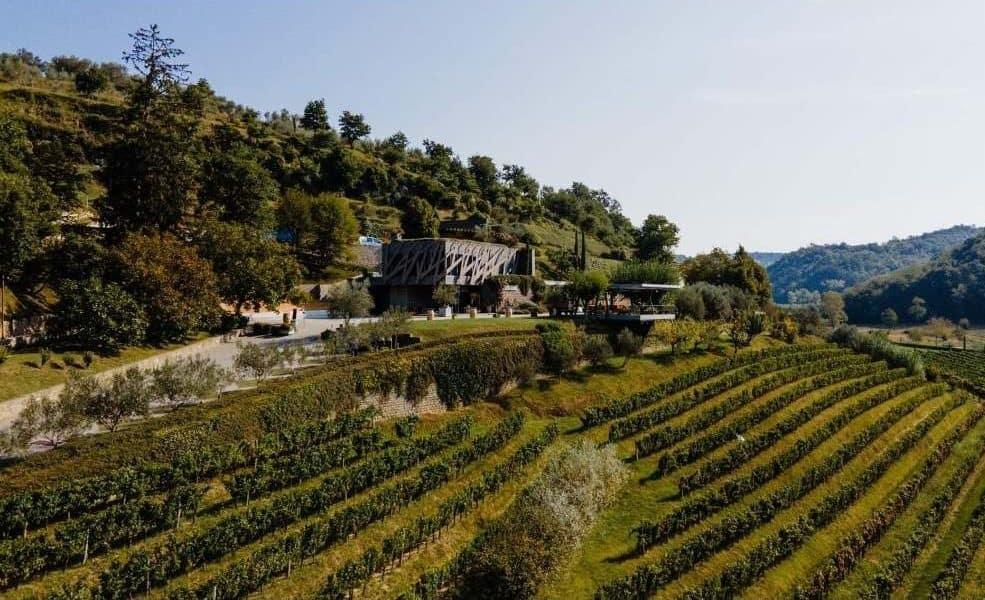 Croatia - Istria - Kozlovic Winery