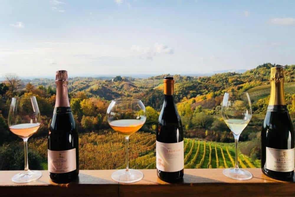 Croatia - Jagunic Winery