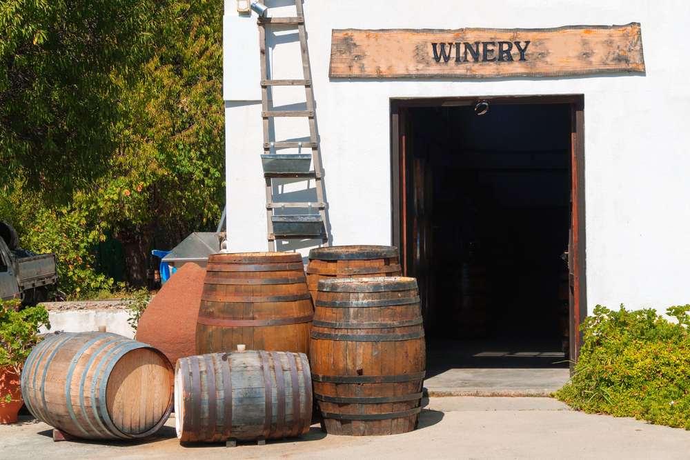 Cretan Wine Guide & Wine Regions (+ Bonus Best Wine Tours on the Island)