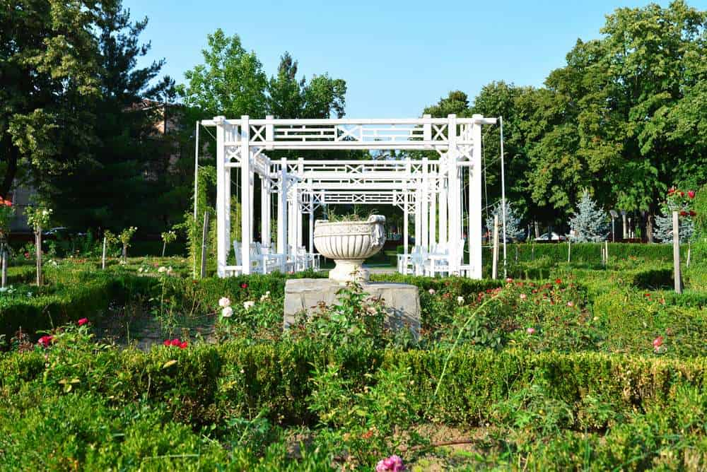 Romania - Timisoara - Timisoara city Romania Roses Park vase detail